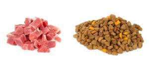Pet food hong kong