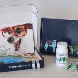 stool testing kit for dogs